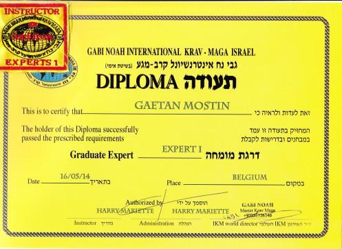 Diplome Expert en Krav Maga IKM